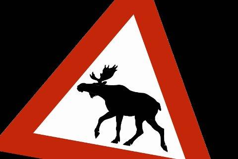 SKILT: Pass opp for elg i veibanen.
