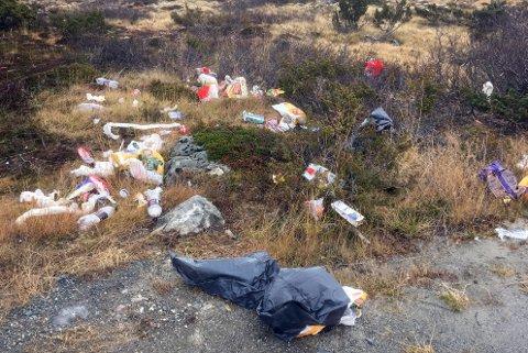 ROT: Slik kan det gå om hyttesøpla ikke kastes på rett sted.