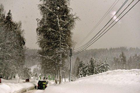 Problemer: Snøen har skapt problemer de siste dagene, blant annet med tung snø og trefall over strømledninger. Her fra Moane.