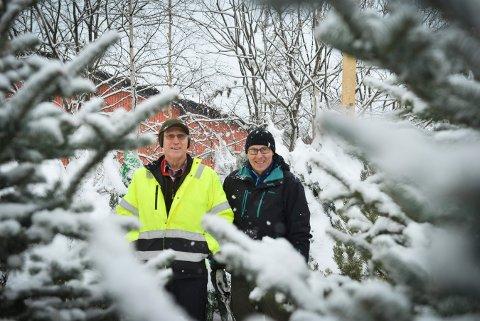 HØYSESONG: Åge Rua og Gunnar Johnrud selger juletrær. De deler gladelig sine tips om hvordan du skal ta vare på treet ditt.