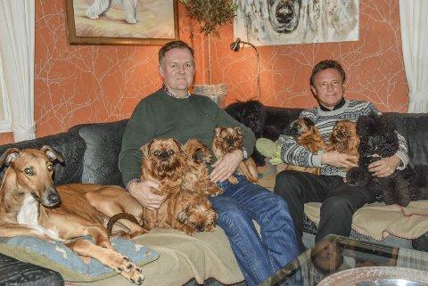 Samling i sofa'n: Åge Gjetnes (t.v.) og Espen Engh sammen med et utvalg hunder i sofaen hjemme på Sjåstad. – For å holde på med dette må du like hunder. Det er en livsstil, sier de begge. Bilder: Cecilie johannessen