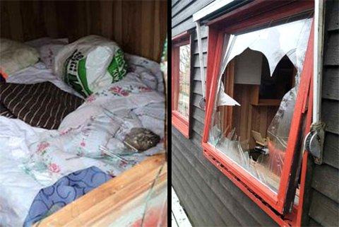 ØDELAGT: Noen hadde tatt seg inn i hytta ved blant annet å kaste en stein gjennom vinduet.