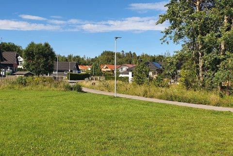LØS HUND: Det var ved Elias Kræmmers Vei, ved Krossern på Jeløy, den løse hunden jaktet rådyr.