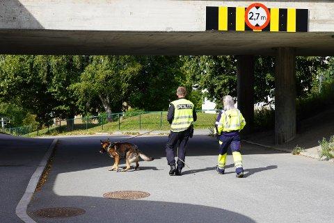 Politets hunder er i gang med nye søk ved Skøyenåsen t-basestasjon.