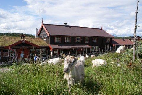 TIL SALGS: Vangsjøen Fjellstue i Øystre Slidre er en av to fjellstuer i Valdres, som nå ligger ute på Finn.no.