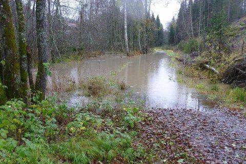 OVERSVØMT: Turveien i Nøstvedtmarka står under vann. - Etter de siste dagers normalt høstregn, flommer bekken over fordi jeg ikke får lov å gjøre noe vedliehold, sier grunneieer Lars Juul.