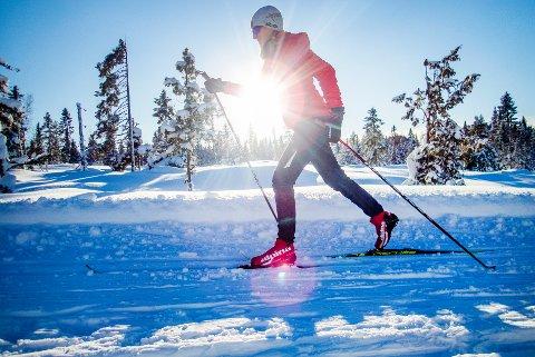 VINTERFERIEN FOR DØRA: Det er håp om snø og skiturer i vinterferien, til tross for at våren har meldt sin ankomst. Illustrasjonsfoto: Gorm Kallestad, NTB