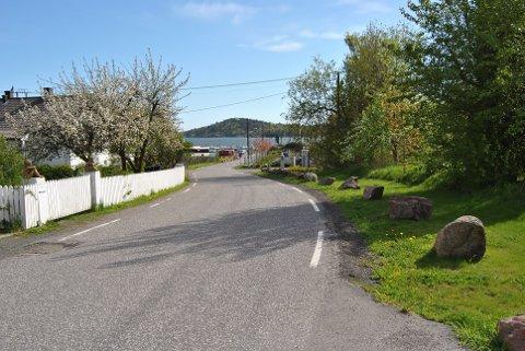 Det er idyllisk i veien ned mot Tenvik, men det kunne vært gjort noe for å sikre de som ferdes her bedre, mener velforeningen.