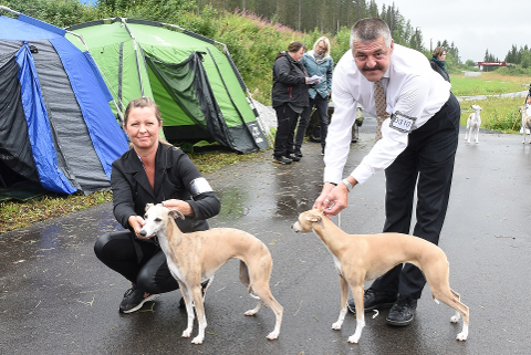 Stina Mikalsen fra Leirfjord med Kira og Finn Arne Haugli fra Dalsgrenda med hunden Fryd avrasen whippet er opptatt av å stille pent kledd, når de skal vise fram hunder på en hundeutstilling.