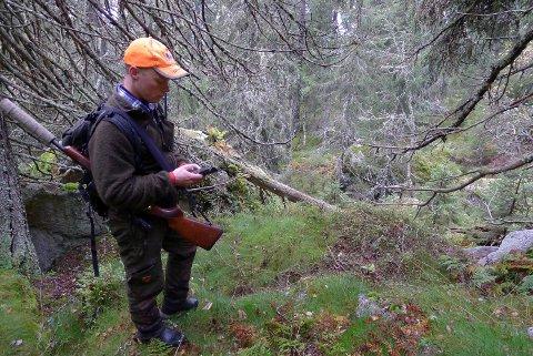 Storviltjakten kan også bli rammet av skogbrannfaren enkelte steder.