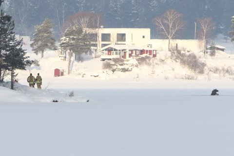 Tyrifjorden: Elgene hadde gått gjennom isen på tuppen av Storøya på Vik-siden.