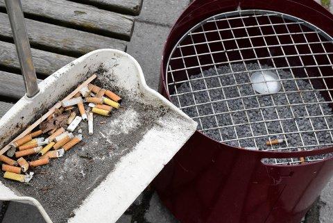I FJOR: Miljøpatruljen fylte et helt feiebrett med sneiper som lå rett ved siden av askebegeret i fjor. Dette er fortsatt et problem, ifølge patruljens leder Ole Geir Haugerud.