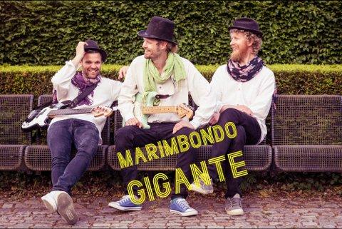 Marimbondo Gigante: Ole Andreas Olafsrud, THomas Reite og Torbjørn Sandvik kommer til Hønefoss.