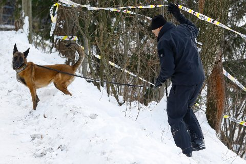 KRIMTEKNISK: Overfor RB bekrefter politiet at de har mottatt svar på en rekke krimtekniske undersøkelser som er gjort i huset til familien Hagen på Fjellhamar.