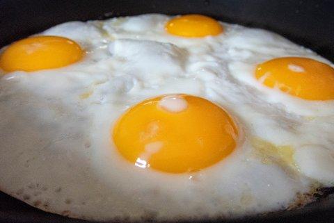 Nesten 4,5 millioner høner produserte eggene våre i fjor, fordelt på 2.200 jordbruksbedrifter. Illustrasjonsfoto: Gorm Kallestad / NTB scanpix