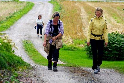 MATSTASJON: Veien over skogene til Mellom Bø og varm ertesuppe går både langs grusvei og stier. Arkivfoto: Per D. Zaring