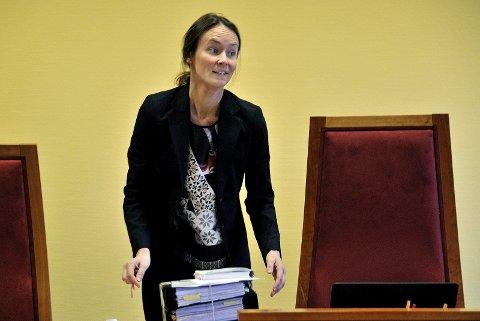 VARETEKT: Dommerfullmektig Thea Elise Kjæraas tog fengslingsbegjæringen til følge. Foto: Jarl M, Andersen