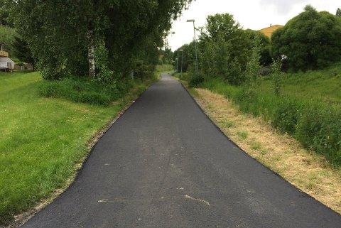 Speiderhuset: Veien fra speiderhuset i Tornerudveien - Sollia.