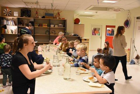 STENGER: Skiptvet kommune har valgt å stenge barnehagene i romjulen.