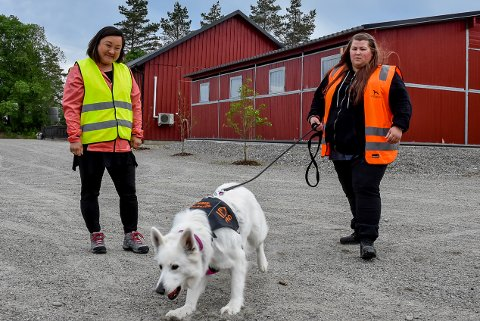Anja Bredal - Silje B. Tangen - ID-hund - Nitrogruppa - Savnet hund