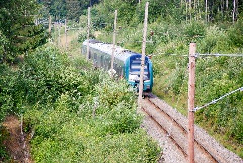 REVET NED: Toget har revet ned kjøreledningen og ble stående cirka 400 meter øst for Slitu stasjon.