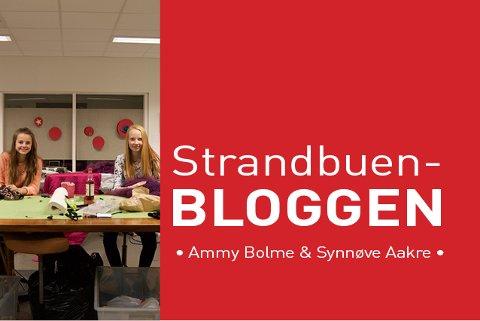 De to unge håndarbeidsentusiastene har delt tips fra sin store lidenskap - sying, med leserne av Strandbuen-bloggen denne våren.