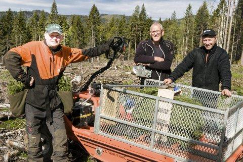 600 trær om dagen: Skogsarbeiderne Jørn Isaken (fra venstre), Tore Fagertun og Runar Hagen planter på nyhogd terreng.