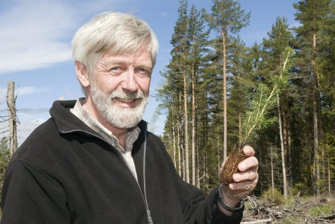 LANGSIKTIG: – Blir pluggen satt godt i jorda, blir dette et hogstmodent tre om 55 til 80 år, forklarer driftssjef Eivind Skurdal.