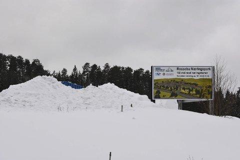 Bytter: Området innenfor Rossebu Næringspark peker seg nå ut som nytt område for nytt regionalt motorsportsenter på Østlandet. For å unngå støykonflikter og trøbbel med boligutbygging trekker man seg nå lenger ut i periferien.