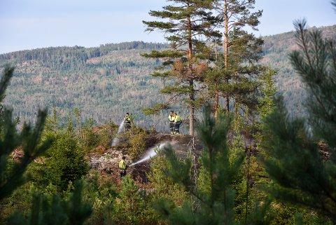 HOGSTFELT: Brannvesenet slukker skogbrannen i hogstfeltet på mellom Høymyr og Landsverk.