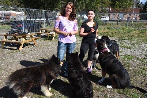VELKOMMEN: Ida Linås og Petra Fjærberg inviterer til familiedag i Notodden hundepark førstkommende søndag.