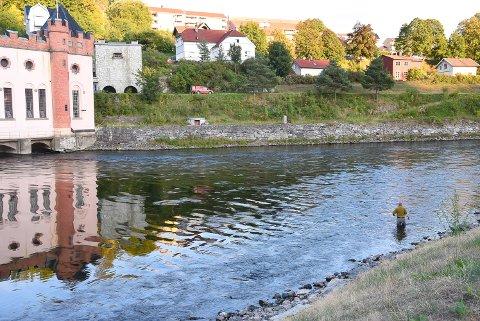 LAKSEFISKE: Denne sommeren har det vært ekstra mange fiskere å se i Tinnåa. For nå biter villaksen.