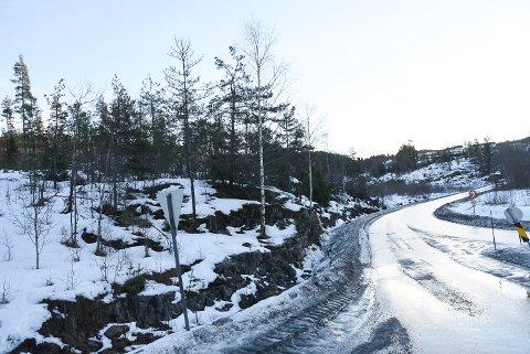 NYE HUS: Her skal Nybuåsen boligfelt komme. Gravearbeidene til vann, vei og kloakk starter til våren.