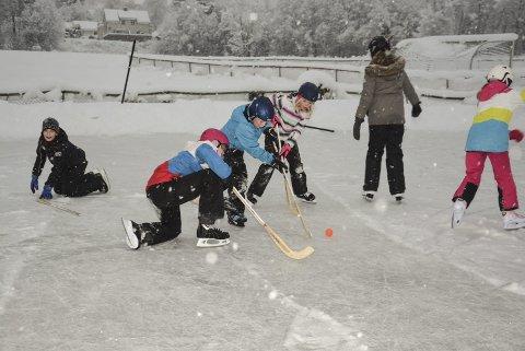 Skøyter: Skøytedag på isen i Sauland i 2016 i regi av Sauland idrettslag. (Foto: Trond Kaasa)
