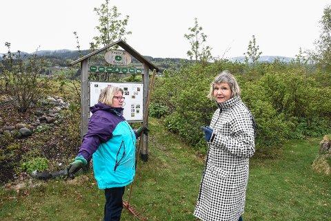 ANSVAR: Notodden Hagelag har 100 roser stående på bystranda. Det krever vedlikehold hver vår. Nå starter snart beskjeringen. Anne Hefre (t.v) og Anne Kvalheim er nå i gang med årets dugnad.