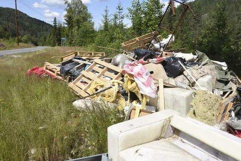 DUMPA: Søppelet på Årlifoss er et av områdene politiet nå har fokus på. (ARKIVFOTO: Beate Evensen).