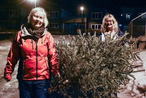 DUGNAD: Notodden bymusikks musikanter Eva Navelsaker Klæboe og Berit Kristine Hilmo Olsen tok i et tak da de samlet inn juletrær på sin rode. Store deler av korpset var i sving rundt om i byen.