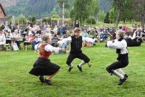 HALLING OG DANS: Vilde Westeng, Even Westeng, Torjus Westeng Bakken (på bildet), Gunn Ingrid Tveiten og Tone Anne Tveiten fra Gransherad spel- og dansarlag viste sine kunster både på scenen og ute på tunet.