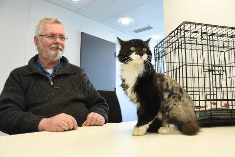 SER IKKE UT SOM FØR: Nils Petter Næsset er glad for å ha fått tilbake katten Mario, men synes prosessen som førte til at katten ble barbert og kastrert er kritikkverdig.