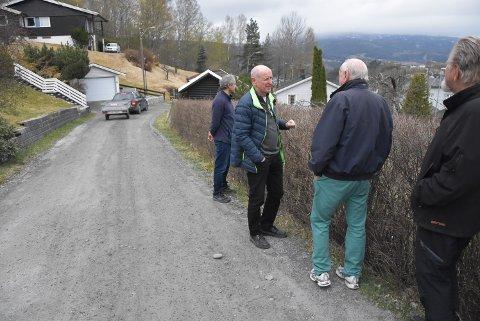 STENGE: Nå vil beboerne ha stengt veien for gjennomkjøring. Den er smal og svingete. Salah Nassar(f.v), Birger Thorsen, Lasse Frømyhr og Asbjørn Johnsen.