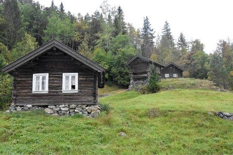 1700-TALLET: Plassen Haukås ble trolig ryddet på slutten av 1700-tallet. Den første man kjenner til som bodde der var Ola Torbjørnson og Tore Petarsdotter. De fikk åtte barn, men fire av dem døde i 1810.