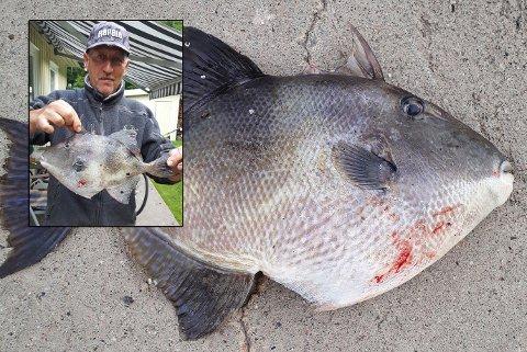 Ryszard Stanislaw Jania var sikker på at han hadde kroket en stor makrell, men fisken han løftet opp på land var langt mer spesiell enn som så.