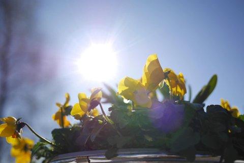 SOOOL: Helgeværet kan bli riktig godt og varmt.