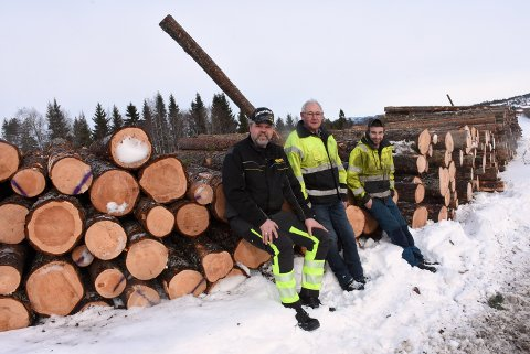 TRE GENERASJONER: Reidar Sakshaug (78) har jobbet i skogen i 55 år. Siden juni i fjor har han vært på samme hogstlag som sønnen Kjell Ivar og barnebar Anton Vist.
