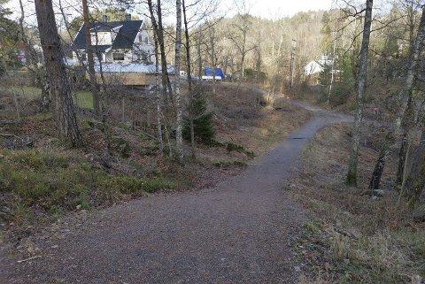 Solfjellparken: Det er i dette området av løypa at det er planer om å gjøre endringer.