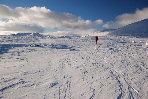 Luksus: Opne vidder, godt skiføre, høg himmel, varm sol og vindstille møtte oss på Valdresflye søndag 15. november.