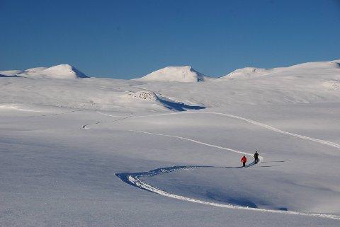 Beitostølen på ski: Det er mange som nyter naturen, som helst vil ha fred og ro på turen i fjellet.