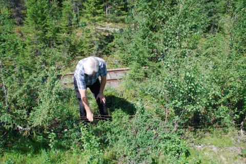 Forsøpling: Å la de falleferdige gjerdene ved Valdresbanen ligge i naturen er forsøpling fra statens side, mener Magne Arvid Rognås.