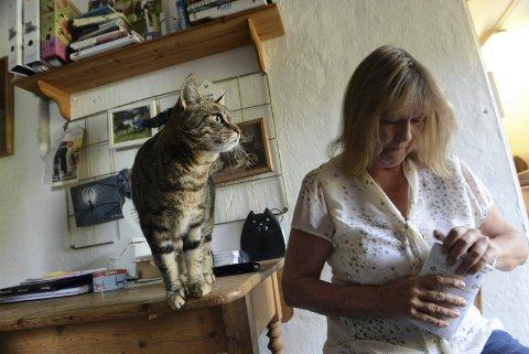 FÅRMYEIGRASROTANDEL:Grethe Bøhnsdalen på Rotnes overtok Katter i nød, en frivillig organisasjon for hjemløse katter, etter Gitta Schubert i 2016.