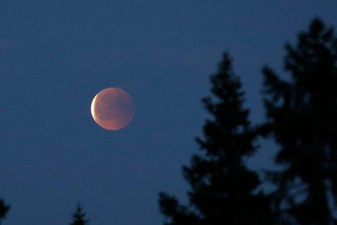 En delvis måneformørkelse vil være synlig på himmelen over store deler av landet tirsdag kveld. Bildet er tatt under måneformørkelsen i april i fjor, sett fra Eggedal i Buskerud. Foto: Erik Johansen / NTB scanpix Foto: Erik Johansen